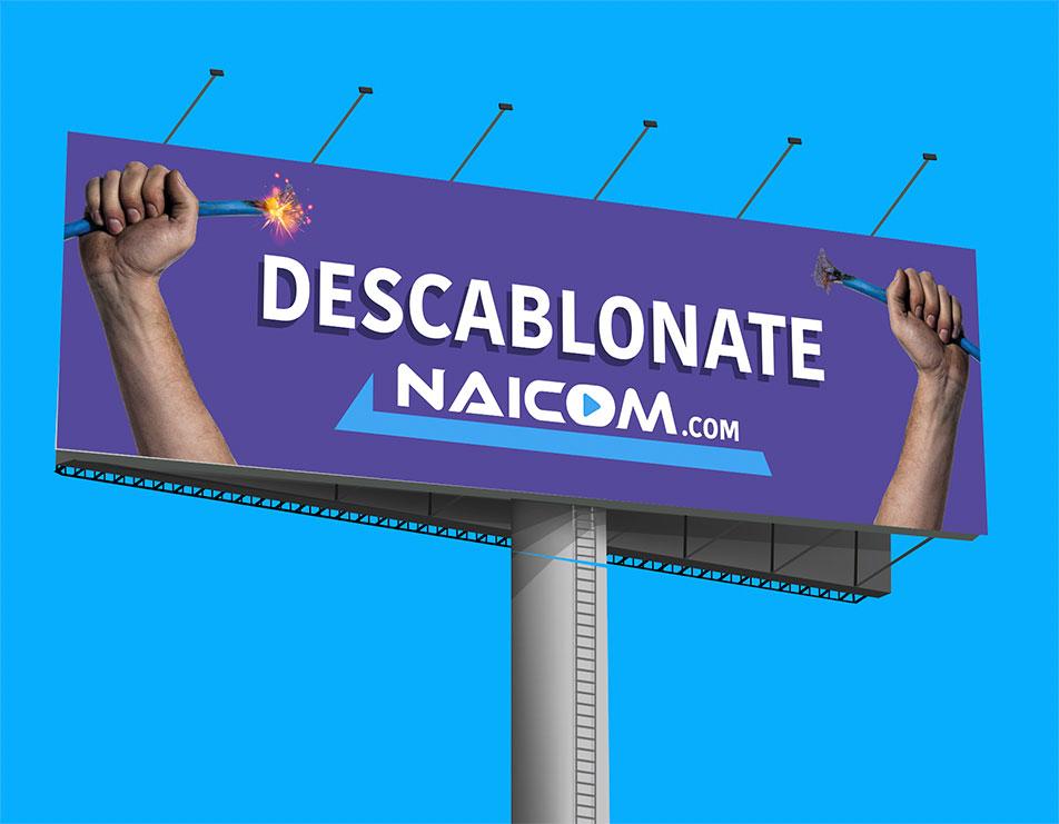 BM_WORK_NAIMCOM_DESCABLONATE_2